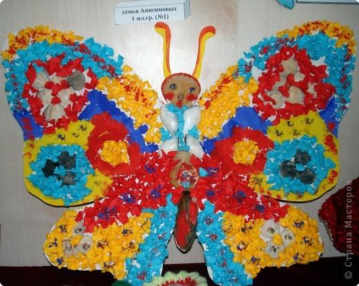 Ну вот и свершилось! За окнами - снег, а у нас в детском саду всеми цветами радуги переливаются крылья бабочек!  фото 19