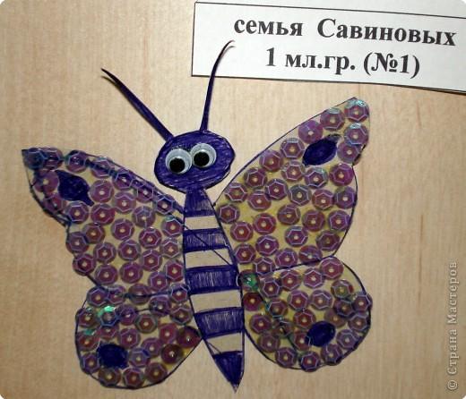 Ну вот и свершилось! За окнами - снег, а у нас в детском саду всеми цветами радуги переливаются крылья бабочек!  фото 30