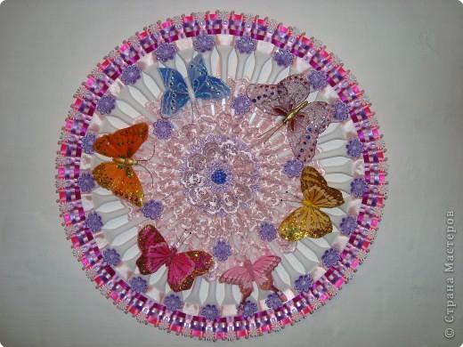 Бабочки на цветке.