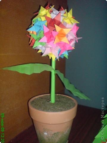 композиция цветущее дерево