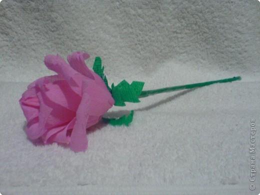 Оригами: Розочка фото 2