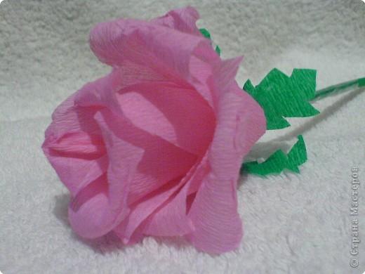 Оригами: Розочка фото 3