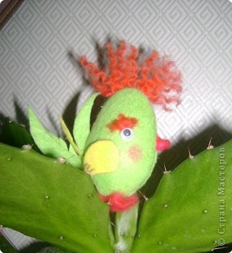Вот такой птенчик поселился у меня на кактусе. Спасибо Ликме.
