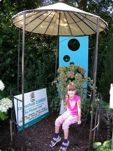 Цветочная выставка. Садовое шоу фото 13