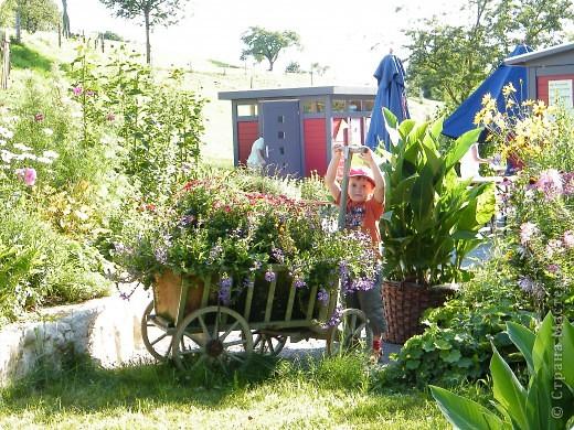 Цветочная выставка. Садовое шоу фото 23
