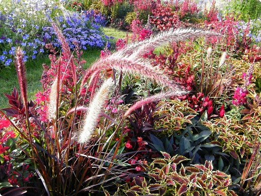 Цветочная выставка. Садовое шоу фото 43