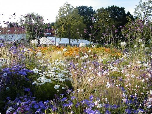 Цветочная выставка. Садовое шоу фото 45