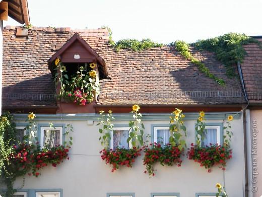 Замок Вертхайм фото 10