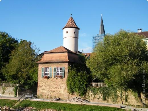 Замок Вертхайм фото 21