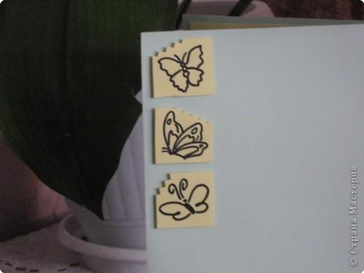 Аппликация: Бабочки фото 7