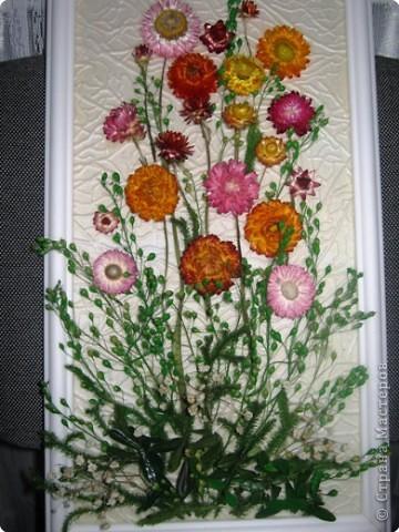 Мыло своими руками из сухоцветов фото 272