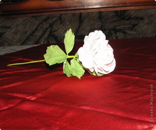 Нарядные георгины, изысканные розы,  и многие другие цветы можно сделать своими руками из ткани!!! фото 4