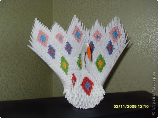 Оригами модульное: Наш красавчик!!!