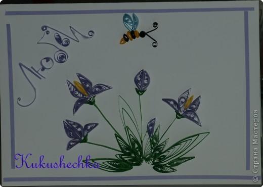 PB155843-1 Бабочка из бумаги в технике квиллинг