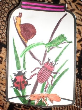 Аппликация: Из жизни насекомых