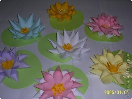 Для изготовления объёмных изделий водяной лилии необходим зеленый картон для листа, цветная бумага светлых тонов. фото 1