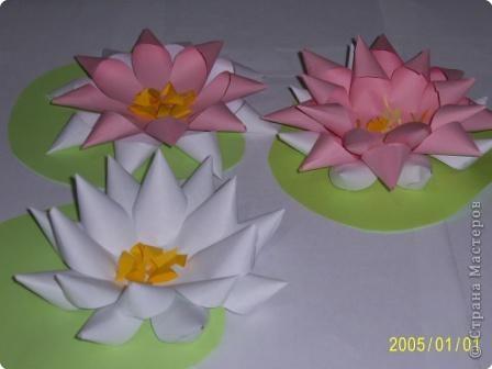 Для изготовления объёмных изделий водяной лилии необходим зеленый картон для листа, цветная бумага светлых тонов. фото 4