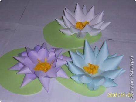 Для изготовления объёмных изделий водяной лилии необходим зеленый картон для листа, цветная бумага светлых тонов. фото 6