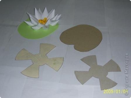 Для изготовления объёмных изделий водяной лилии необходим зеленый картон для листа, цветная бумага светлых тонов. фото 2
