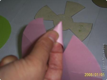 Для изготовления объёмных изделий водяной лилии необходим зеленый картон для листа, цветная бумага светлых тонов. фото 3