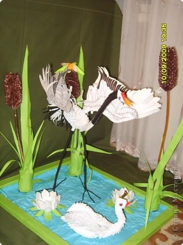 Оригами модульное: На пруду фото 1