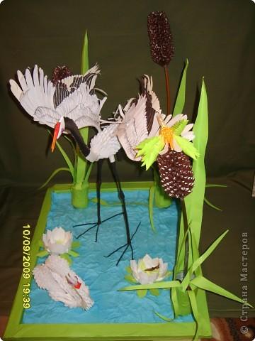 Оригами модульное: На пруду фото 2