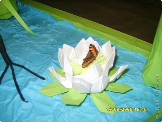 Оригами модульное: На пруду фото 3