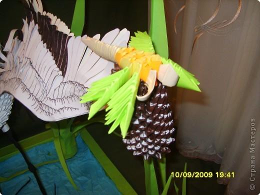 Оригами модульное: На пруду фото 4