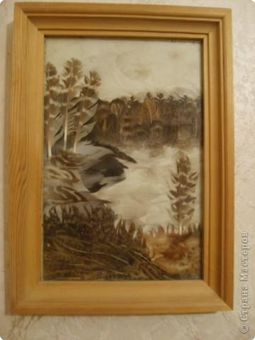 Картины из перьев Перо фото 1