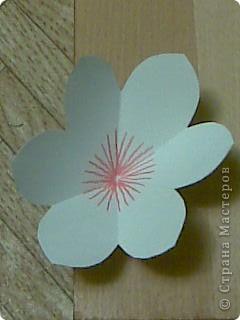 открытка -объемные цветы, фото 10