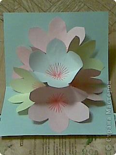 открытка -объемные цветы, фото 18