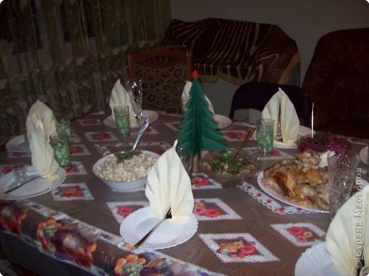 Вот кто  нам составил компанию в рождественский вечер. фото 2