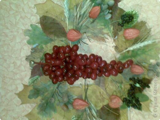 На картонную круглую заготовку наклеила сушенные листья, плоды боярки, коробочки клюквы, желуди и искусственная гроздь винограда.