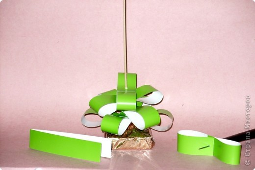 Зелёная красавица фото 4