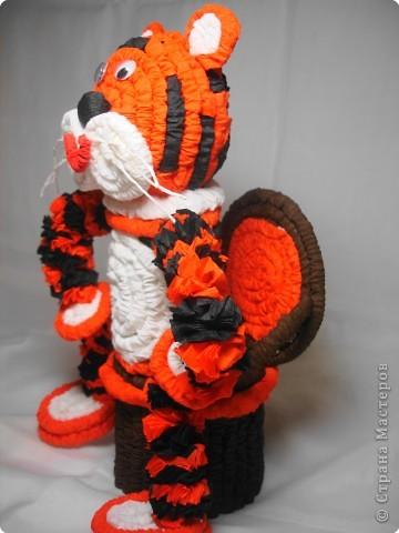 тигр фото 2