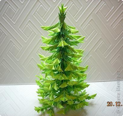 Представляю вам мой ельничек... Вот такие я вырастила деревца...  Какие-то быстро выросли, а какие-то долго росли, но решила показать! фото 13