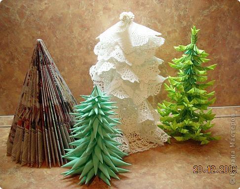 Представляю вам мой ельничек... Вот такие я вырастила деревца...  Какие-то быстро выросли, а какие-то долго росли, но решила показать! фото 1
