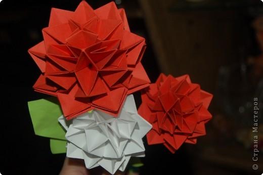 Оригами: Георгины фото 2
