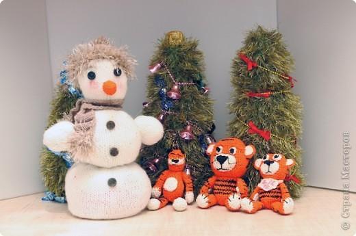 Снеговик и тигринная семейка.