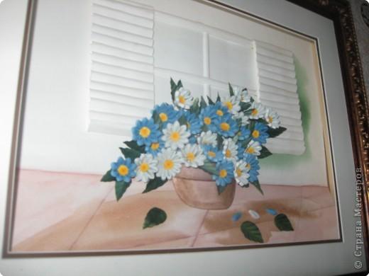 розы из ханди в горшке фото 2