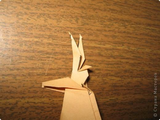 Северный олень(автор Исао Хонда, Япония) фото 15