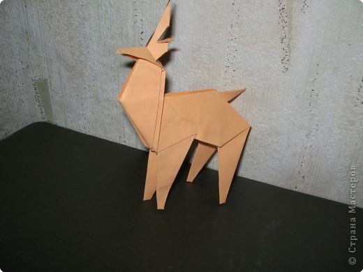 Северный олень(автор Исао Хонда, Япония) фото 1