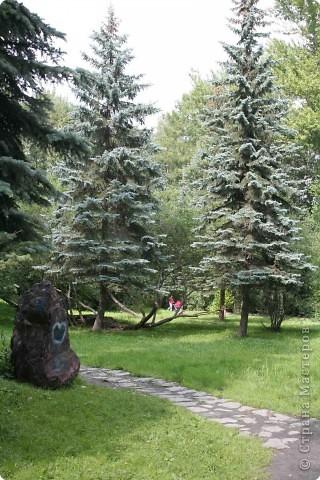 Предлагаю жителям и гостям Страны мастеров отдохнуть чуток и прогуляться по летнему парку моего города. фото 3