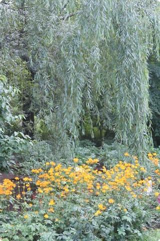 Предлагаю жителям и гостям Страны мастеров отдохнуть чуток и прогуляться по летнему парку моего города. фото 11