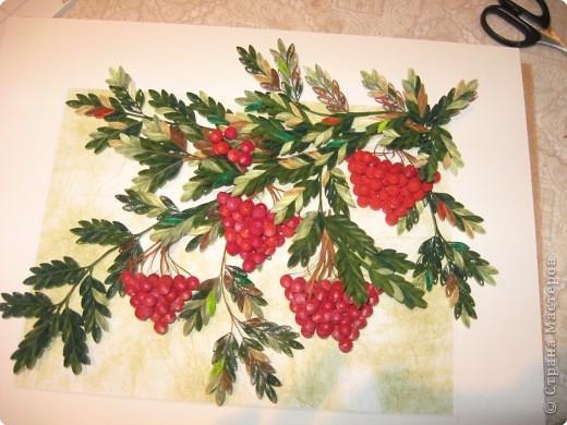 розы из ханди в горшке фото 7
