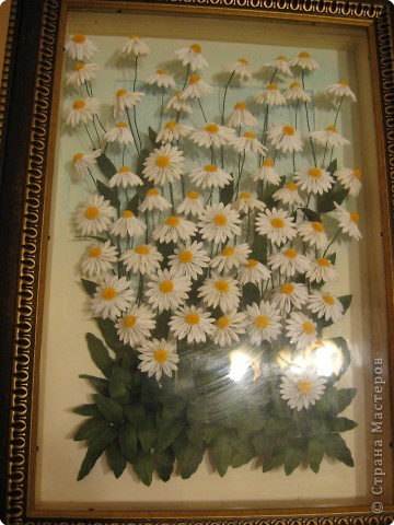 розы из ханди в горшке фото 6
