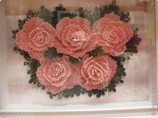 розы из ханди в горшке фото 4