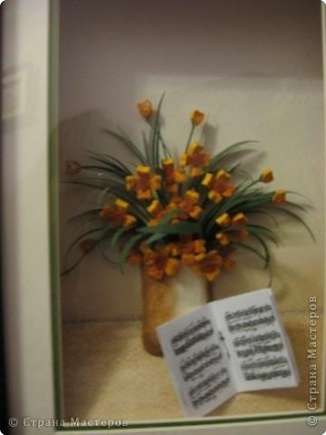 розы из ханди в горшке фото 5