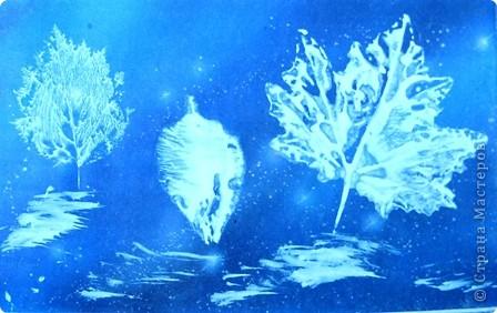 Заготовила зима  Краски все для всех сама.  Полю — лучшие белила,  Зорям — алые чернила.  Всем деревьям — чистые  блестки серебристые.  В. Фетисов  фото 4