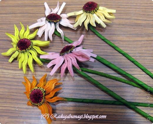 Хочу  Вам рассказать, как собиралась данная работа. Для цветка нам необходимы полоски 0,3 см (лепестки) и 0,7 см (серединка). Бумага зеленого цвета (для стеблей и листьев), проволока. И горячий пистолет. фото 4